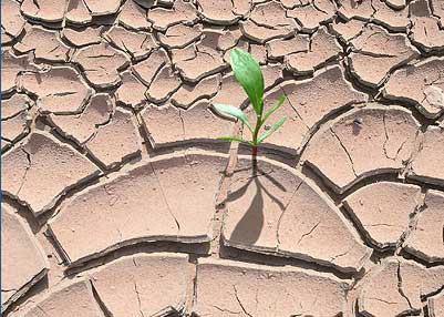 Kršan: Poziv za prijavu štete od elementarne nepogode - suše!