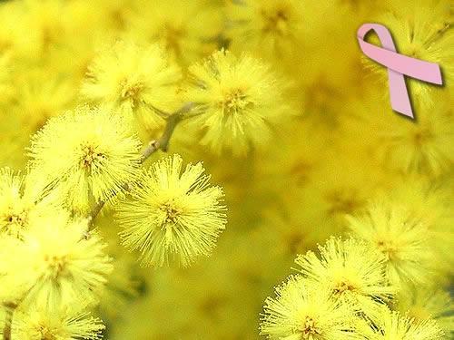Peta po redu akcija pod nazivom Dan mimoza
