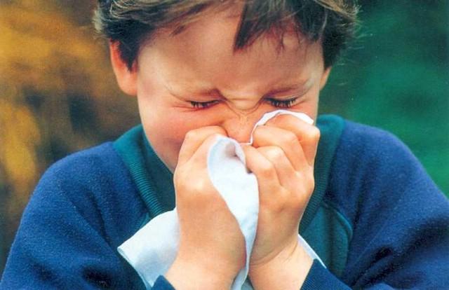 U veljači na Labinštini registrirano 20-tak oboljelih od gripe
