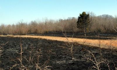 Na Labinštini sedam požara u jednom danu