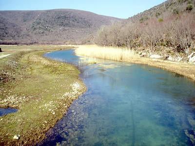Ribogojilište pada u vodu zbog zagađenosti kanala
