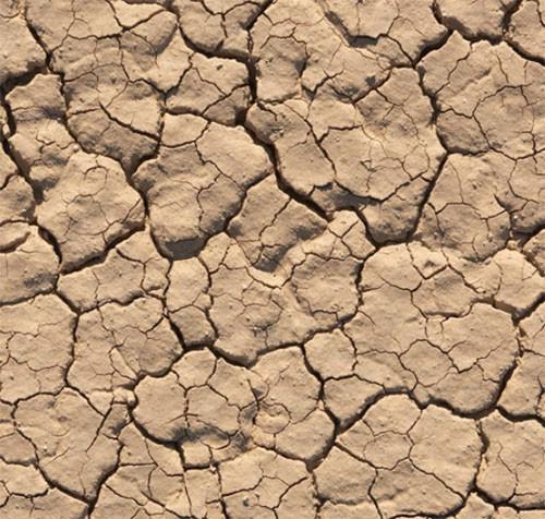 Župan proglasio izvanredne mjere zaštite od suše za cijelu Istarsku županiju