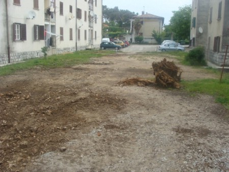 Uređenje zemljišta za buduće drvarnice