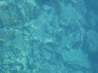 More izvrsne kakvoće
