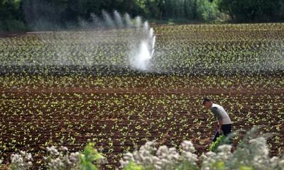 Kršan, Pićan, Sveta Nedelja: Nakon apela građanima da ne navodnjavaju, potrošnja vode veća