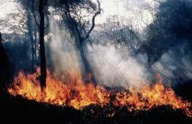 Županijski vatrogasni zapovjednik Dino Kozlevac još jednom upozorava da je do 31. listopada zabranjeno loženje vatre na otvorenom