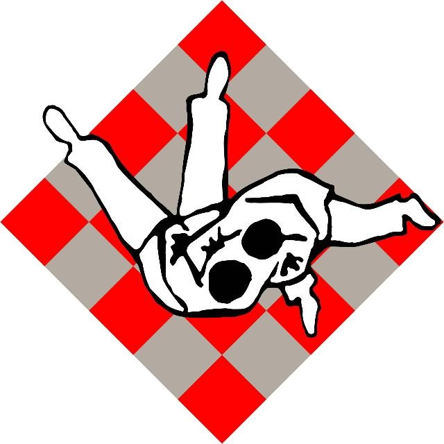 "Judo turnir ""Labinska republika 2008"""