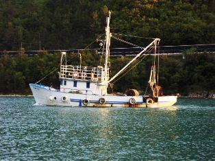 [OBAVIJEST] Ribari moraju dostaviti račune za gorivo