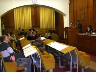 I labinski vijećnici prihvatili odluku o osnivanju Lokalne akcijske grupe Istočna Istra