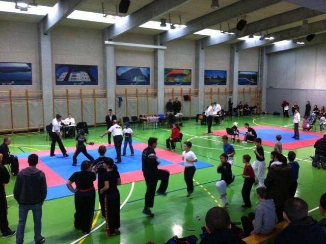 Labinjani prvaci županijskog prvenstva u kickboxingu u light i semi kontaktu