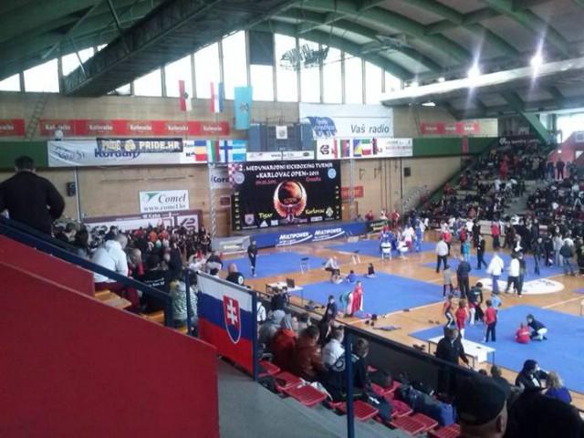 KBK Budokai Labin na 2. Međunarodnom kickboxing kupu `Karlovac open 2013` osvojili 6 odličja
