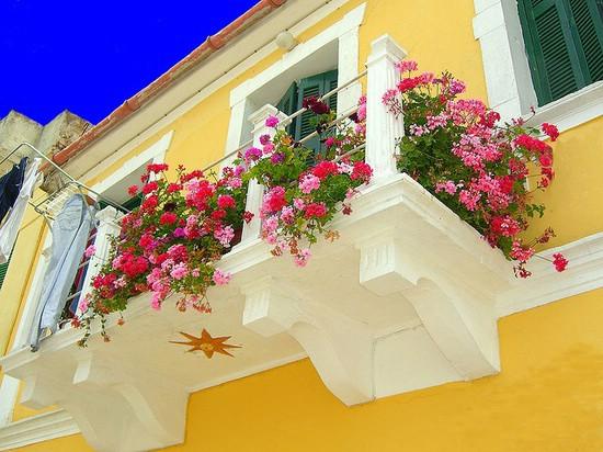 Počela akcija za izbor najljepšeg balkona i okućnice u Gradu Labinu
