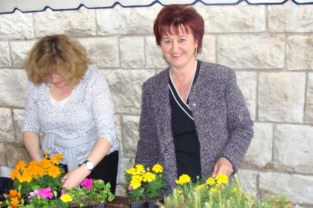 Građani darivani sadnicama cvijeća i borova