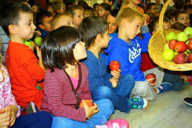 Ekološke jabuke za djecu Dječjeg vrtića
