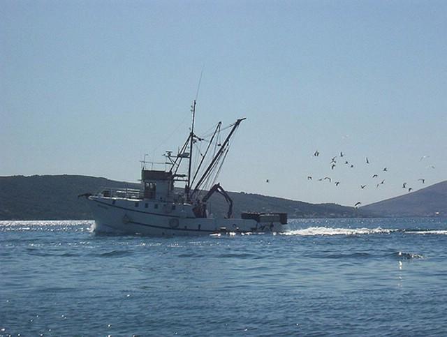 Poziv ribarima na upis novih ribolovnih zona u važeće povlastice
