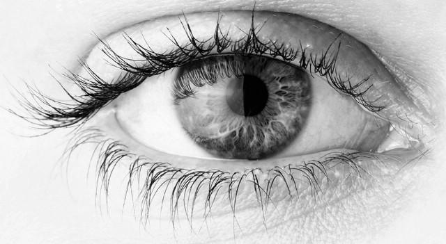 """Labin: Predavanja na temu """"Dijabetes i oko"""""""