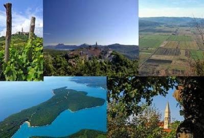 LAG-u Istočna Istra isplaćeno je 39.451,30 kn