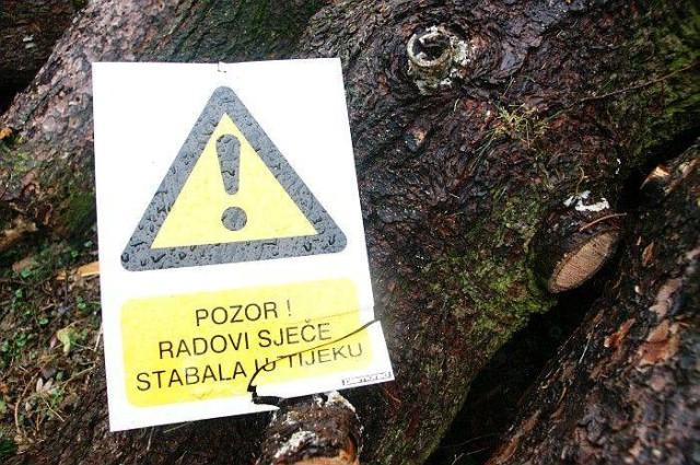 Sječa stabala uz županijsku cestu Labin-Rabac - promet naizmjenice do 18.4.2014. - nastavak radova po potrebi i nakon 22.4.