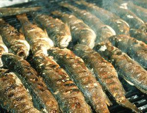 Uspješna Ribarska fešta na porte u Plomin Luci