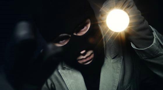 Mladić s područja Općine Raša (26) osumnjičen za četiri kaznena djela teške krađe