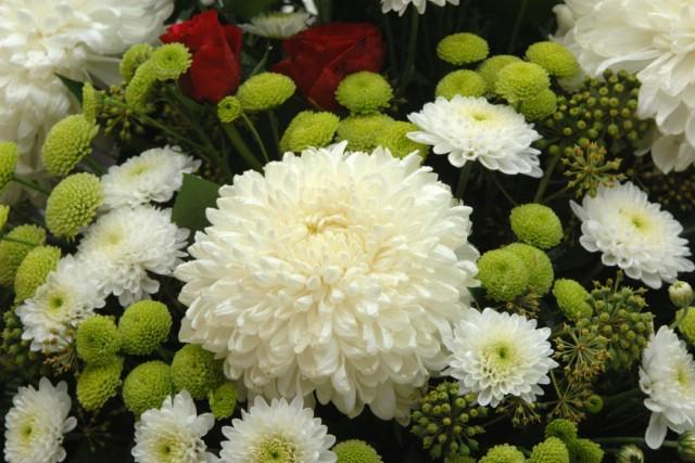 Ponuda cvijeća u Labinu uoči blagdana  Svih svetih i Dušnog dana