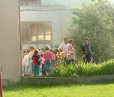 Magarac razveselio djecu u vrtiću