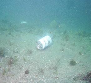 Čišćenje plaža na Labinštini