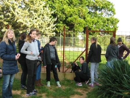 Posjeta Udruzi za zaštitu životinja `Feniks` Labin