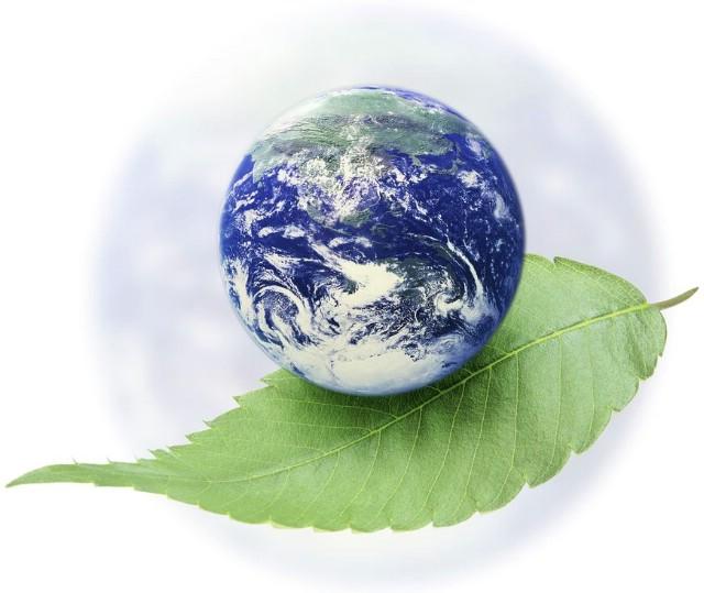 Svjetski je dan zaštite okoliša