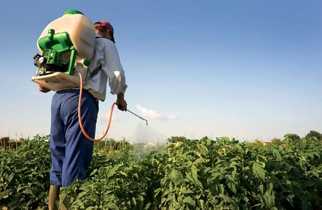 Sutra i u nedjelju u Plomin Luci tečaj i polaganje ispita za sigurno rukovanje pesticidima