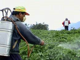 Općina Raša: Produžen rok za prijavu na tečaj o pesticidima