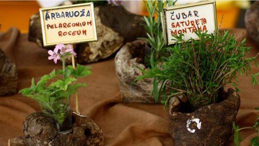 Festival samoniklog bilja u Kršanu  25.-26. travnja 2015.