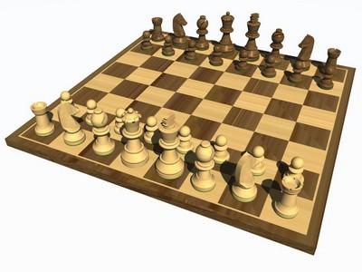 Labinjan Tomislav Fabeta uspješan junior na 22. Međunarodnom šahovskom turniru 'PULA OPEN 2008''