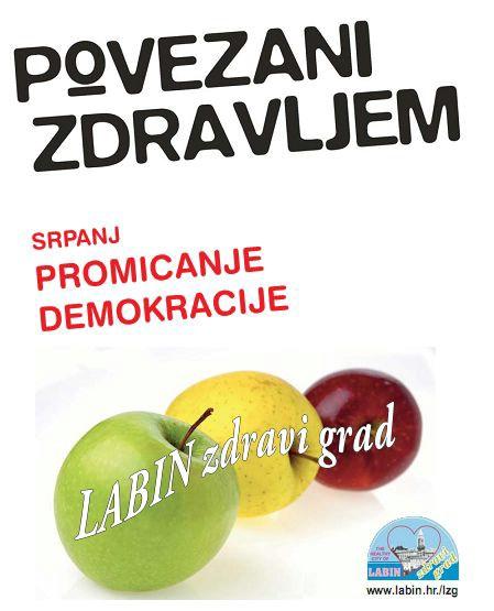 Dvadeseta obljetnica Hrvatske mreže zdravih gradova (Program)