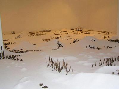 Neobična izložba Slovenke Elene Fajt u Gradskoj galeriji Labin