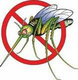Danas zamagljivanje protiv komaraca na području Općine Kršan