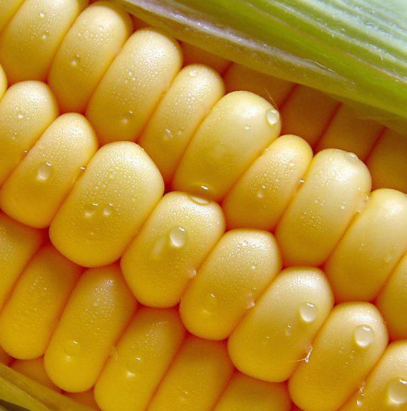 Đir po labinskoj tržnici: klip kukuruza dvije do tri kune