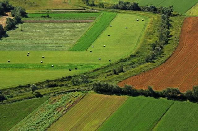 Agencija za poljoprivredno zemljište otvorila podružnicu u Pazinu