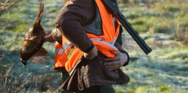 U lov na divljač s fluorescentnim prslukom