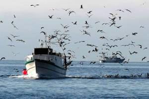 Stečeni uvjeti za osnivanje Lokalne akcijske grupe u ribarstvu