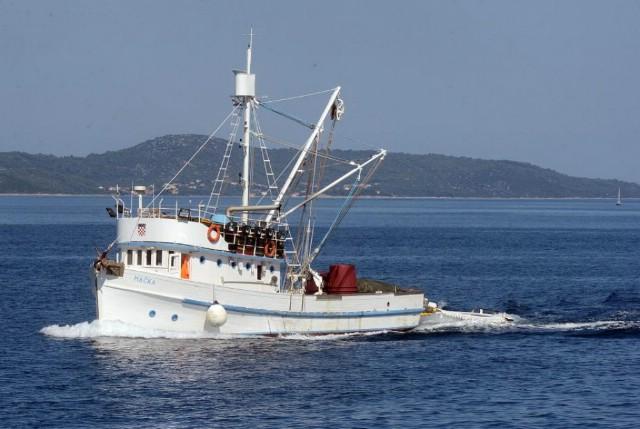 """Osnovana Lokalna akcijska grupa u ribarstvu (FLAG) """"Alba"""""""