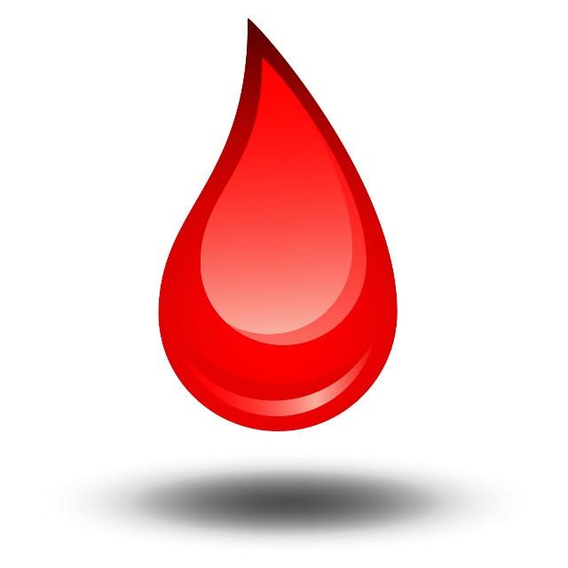 Najava: akcija dobrovoljnog darivanja krvi u Labinu i Koromačnu