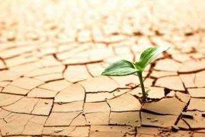 """Tečaj """"Poljoprivreda, okoliš i klimatske promjene - uvod"""""""