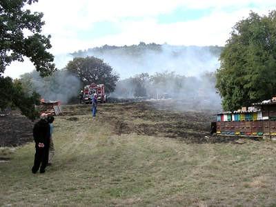 Za požar na Labinštini kriv pčelar iz Rapca?