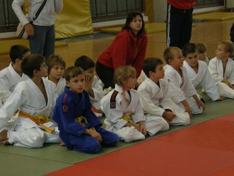 """Judo turnir PIG-regije """"Ippon 2008"""" - Dino Kostadina najbolji Labinjan"""