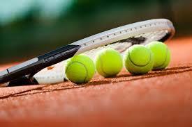 Počinje natjecanje u Prvoj hrvatskoj teniskoj ligi - 1. kolo u Rapcu 29.05.2016. u 10 sati