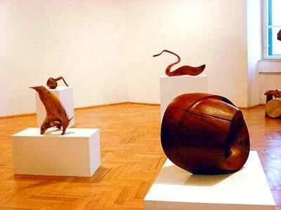 U Narodnom muzeju Grada Labina prva samostalna izložba Lorisa Morossinia: Sinergija čovjeka i prirode