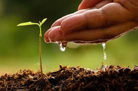 Odluka o dodjeli sredstava za sufinanciranje programa, projekata i manifestacija u području poljoprivrede koje provode udruge na području Općine Raša za 2016.godinu