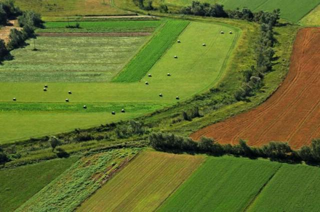 Javni poziv za dodjelu zakupa za poljoprivredno zemljište
