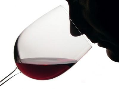 Pićan: Izložba mladog vina i pićanski relly